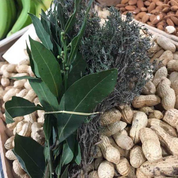 Plante Arômatique - le potager coudoux