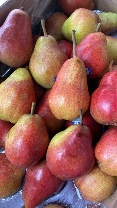 Fruit le Potager de Coudoux