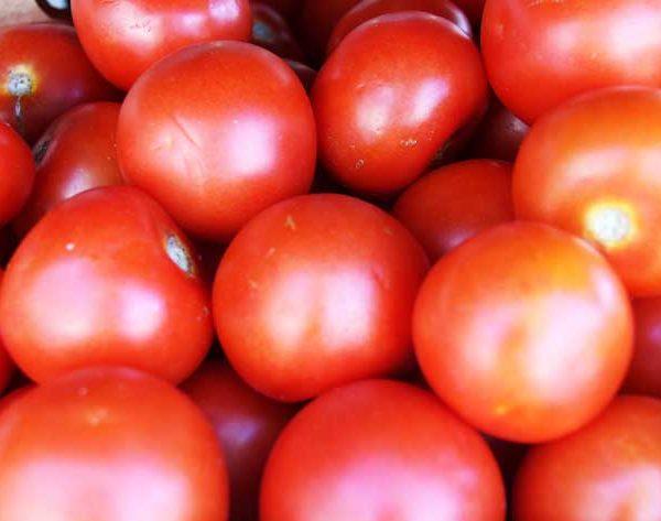 Légumes - tomate - le potager coudoux
