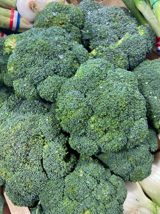 bouquet-brocolis-le-potager-de-coudoux