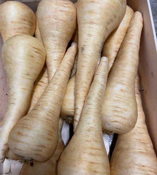 panais-vieux-legume-le-potager-de-coudoux