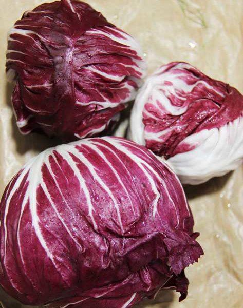 Légumes - lepotagercoudoux.fr