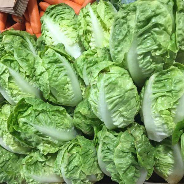 Légumes - salade - le potager coudoux