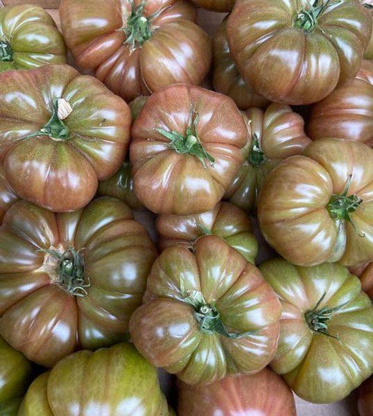 tomate-noire-de-crimee-potager-coudoux