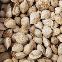 Le Potager Coudoux - Epicerie Fine - Fruits & Légumes secs