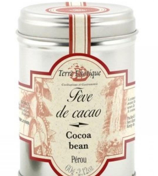 TERRE-EXOTIQUE-pfeve-cacao-le-potagre-de-coudoux
