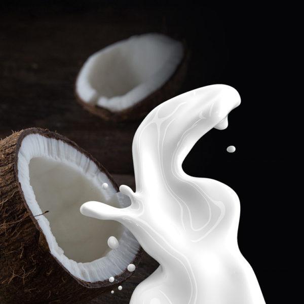 lait-coco-potager-coudoux