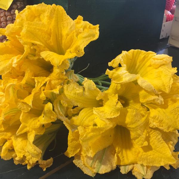 Fleurs-de-Courgettes-de-Velaux-le-potager-de-coudoux