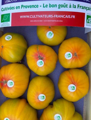 tomates-ananas-bio-anciennes-provence-potager-coudoux