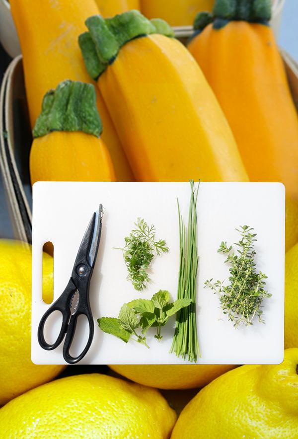 courgettes jaunes ails thym citron potager de coudoux